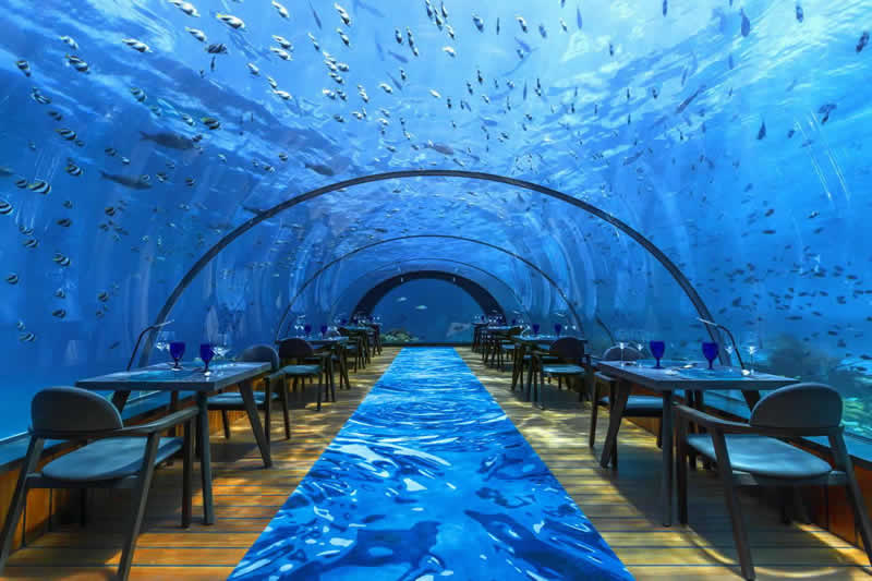 5.8 Undersea Restaurant, Romantic Underwater Dinner at Hurawalhi