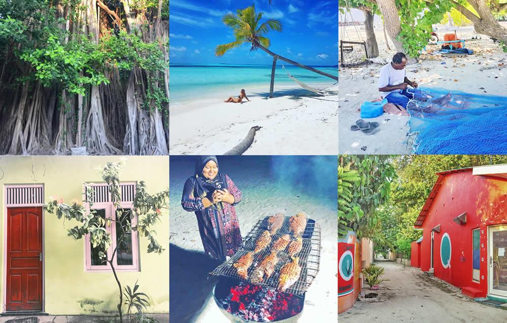 жизнь на острове дангети