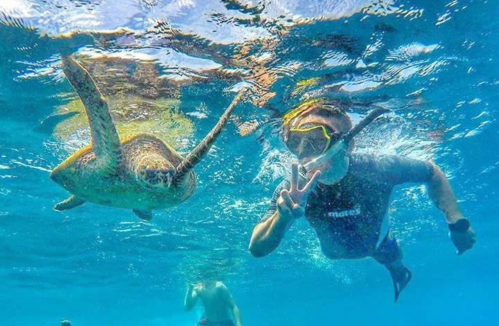 снорклинг с морской черепахой на Мальдивах