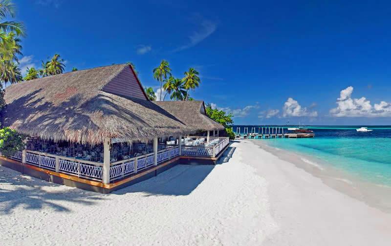 пляжный ресторан Maaga
