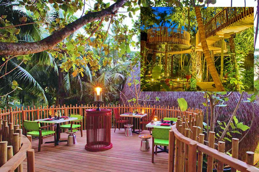 Treetop Dining at Niyama Private Islands