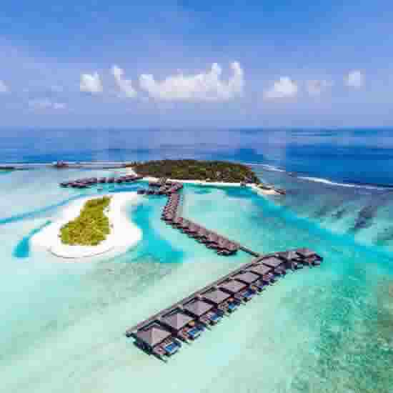 Most Popular Boutique Resorts Accessible by Speedboat from Male Airport