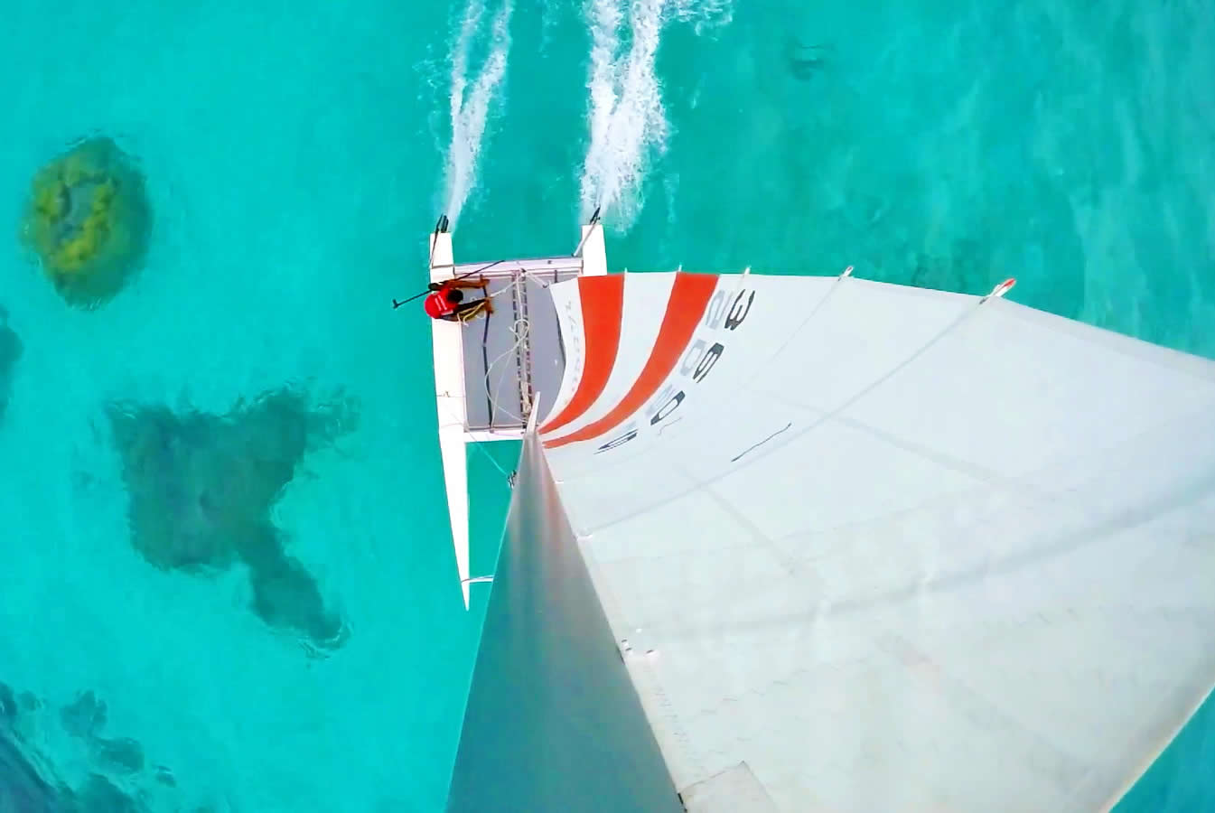 Catamaran Sailig Excursion