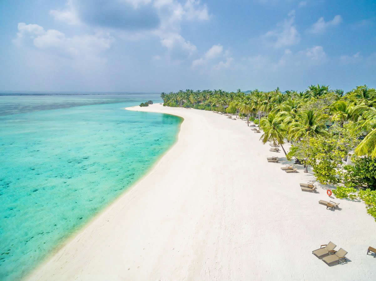 the white sand beach in the maldives
