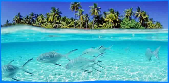 lSouth Male Atoll (South Kaafu)