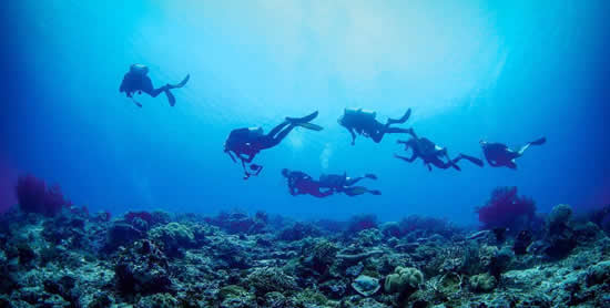 world class dive sites