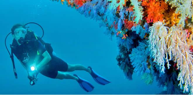 Scuba Diving in Noonu Atoll