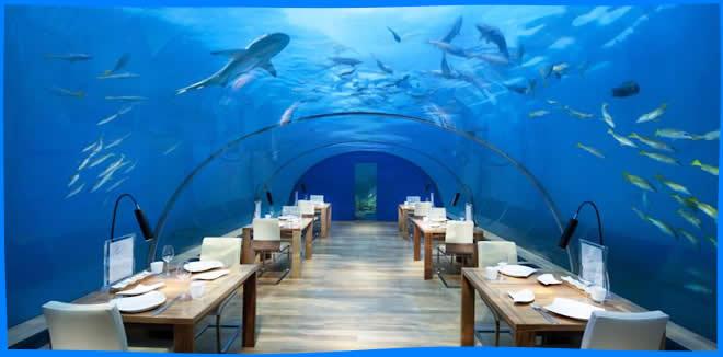 Conrad Maldives Rangali Island underwater