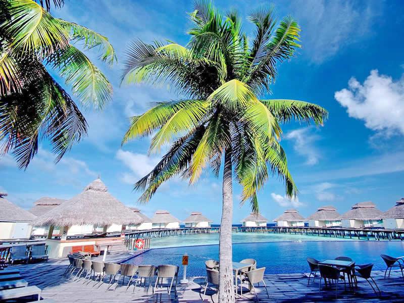 бассейн в Ellaidhoo Maldives by Cinnamon