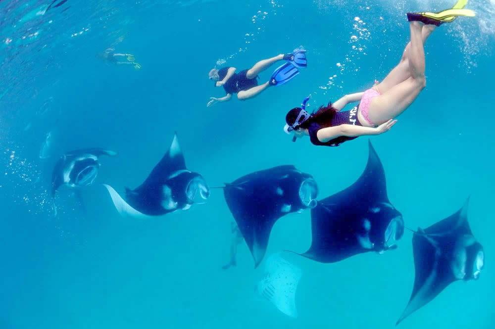бюджетная поездка на мальдивы Когда - Лучшее Время для Поездки