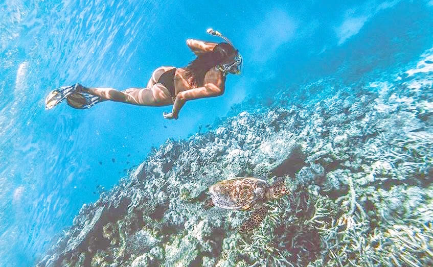 house reef free diving maldives