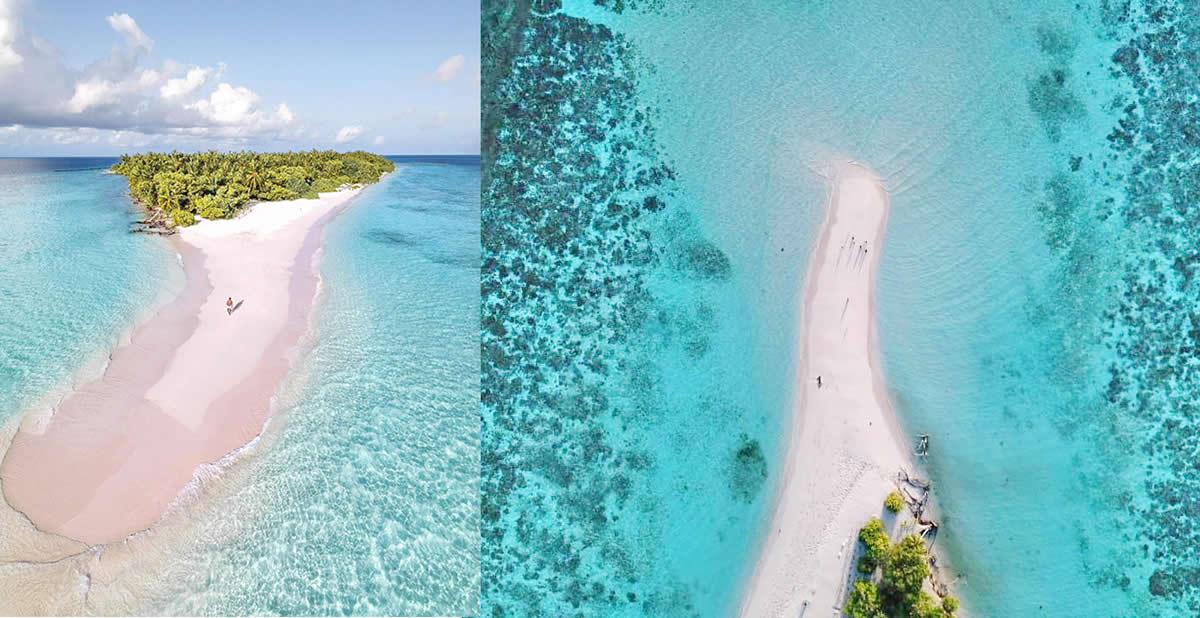 пляж на мальдивах и пальмы