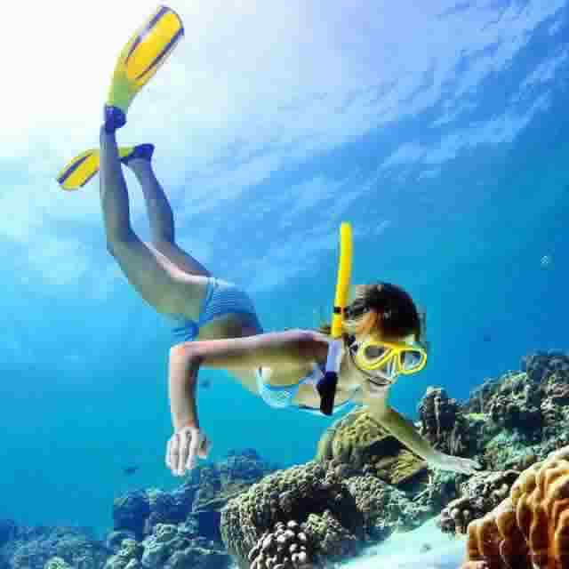 Best Resorts for a great house reef snorkeling