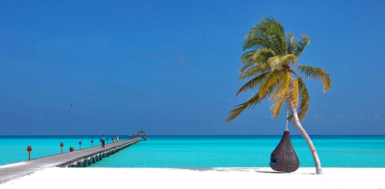 Top 10 Best Ari Atoll resorts