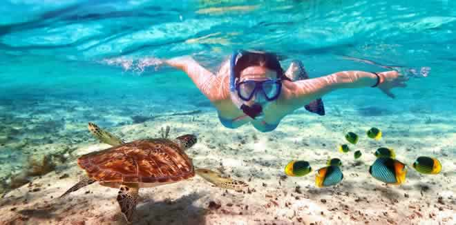 10 most fabuluos House Reefs snorkelling in Maldives