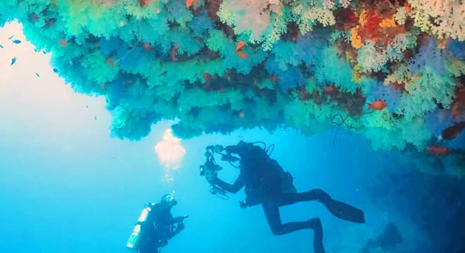 Diving in Vaavu Atoll